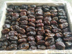 صادرات خرما کبکاب